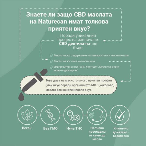 сбд имасло - инфографика - naturecan